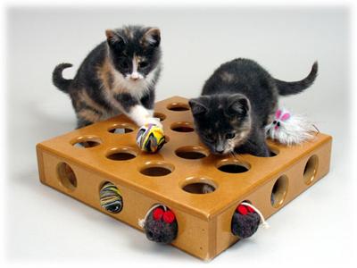 Кошачьи игрушки