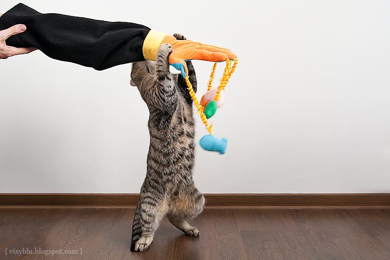 Как сделать игрушку для котенка своими руками 2