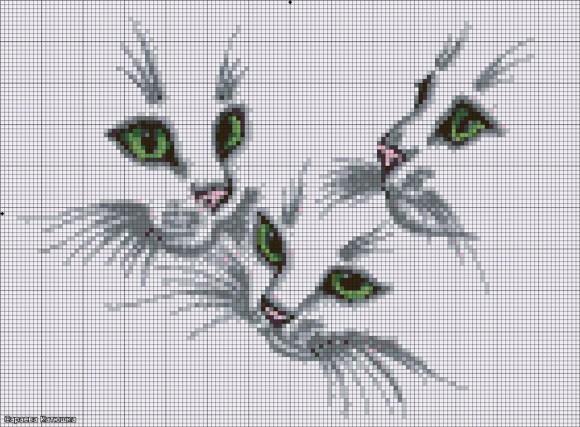 Схемы вышивки глаза кошек