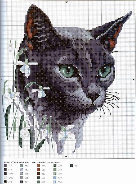 Схема вышивки кошка с цветами