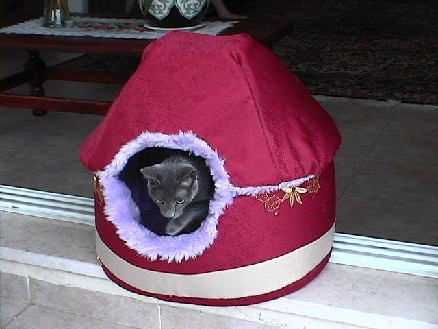 Как делать домики для кошек своими руками