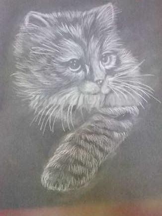 Мастер-класс по пергамано — пушистый котик