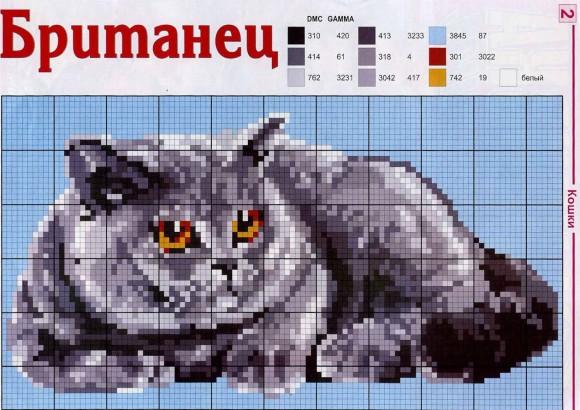 Схема для вышивания кота