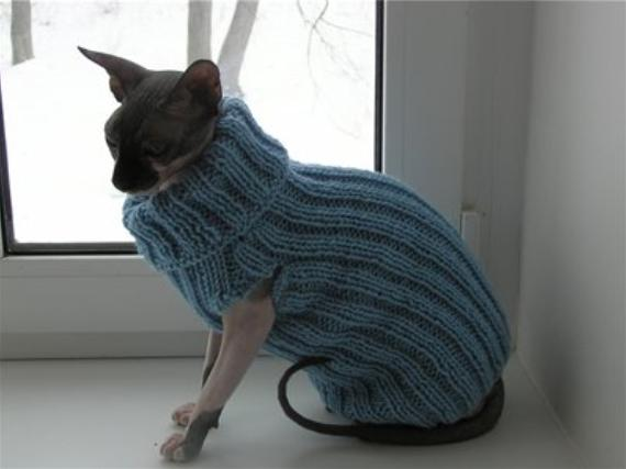 Свитер крючком коту