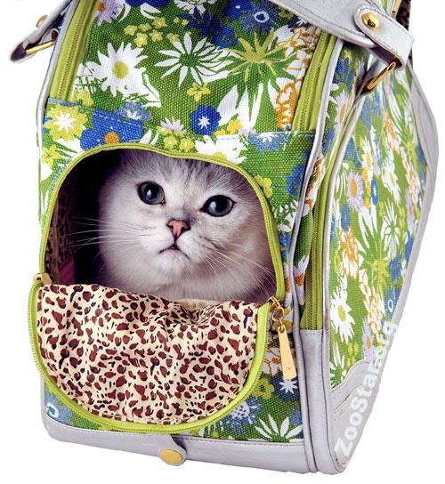 Шьём сумку для переноски кошки