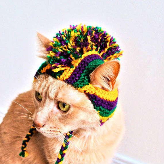 Для кошек шапки связанные крючок
