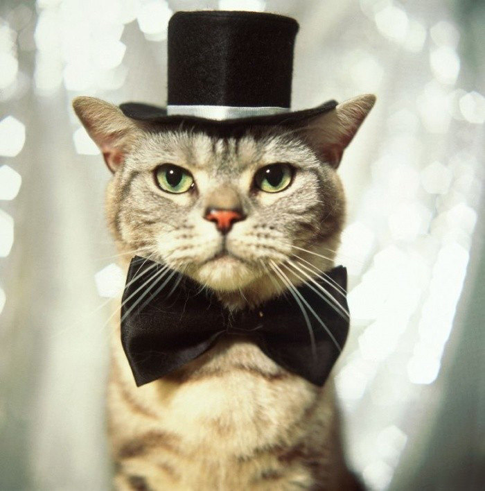 Шьем шторы галстук мастер класс своими руками #7