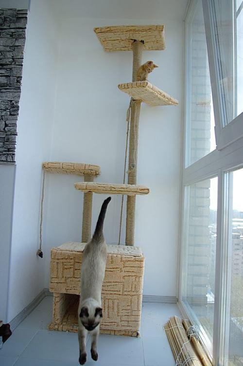 Высокий дом для кота